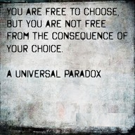 Free To Choose
